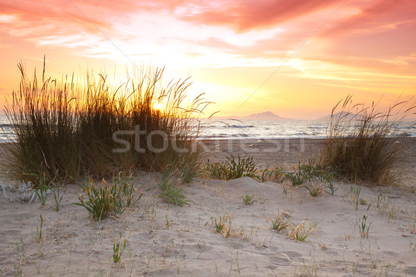Sunset at Kalogria beach Stock photo © igabriela