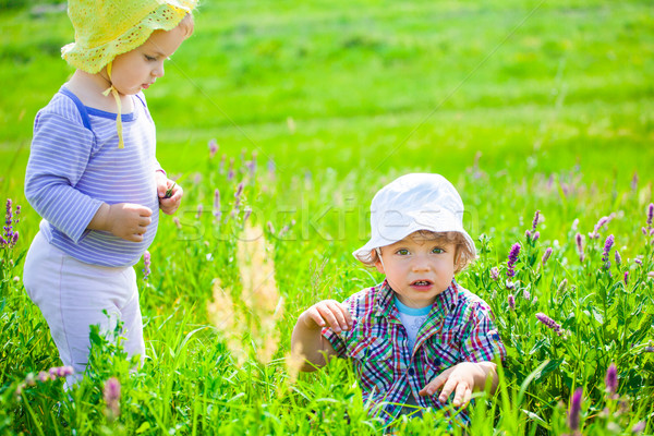 Baby boy and baby girl on a meadow Stock photo © igabriela
