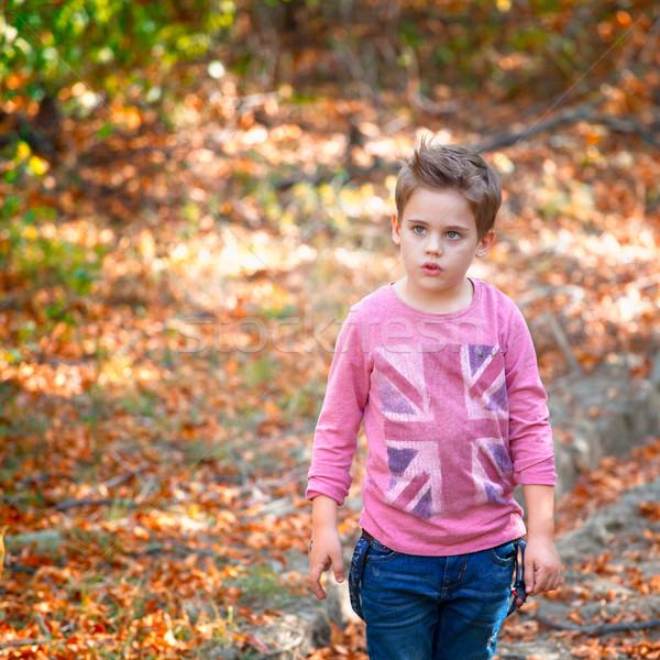 Fiú portré szabadtér 5 éves ősz erdő Stock fotó © igabriela