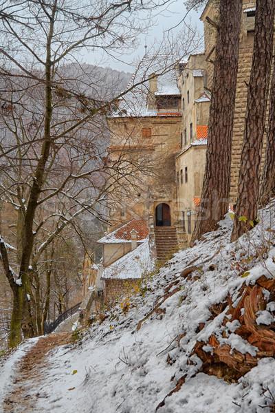 Kepek kale giriş Romanya kış sezonu manzara Stok fotoğraf © igabriela
