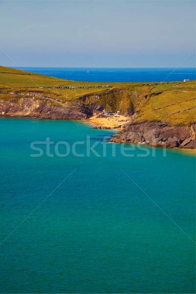半島 ビーチ 頭 夏 アイルランド 海 ストックフォト © igabriela
