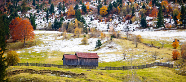ősz színek gyönyörű tájkép vidék Romania Stock fotó © igabriela
