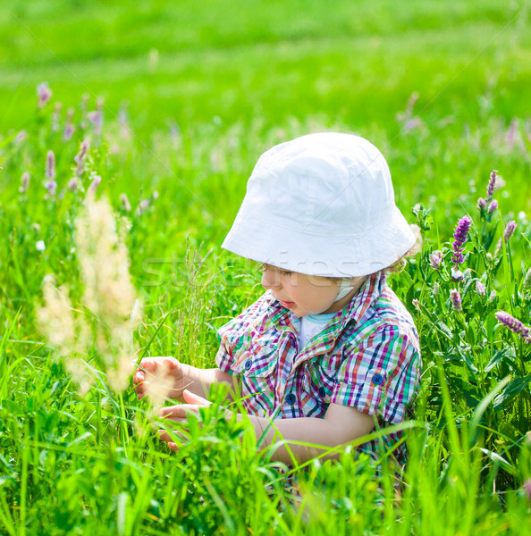 Baby boy on a meadow Stock photo © igabriela