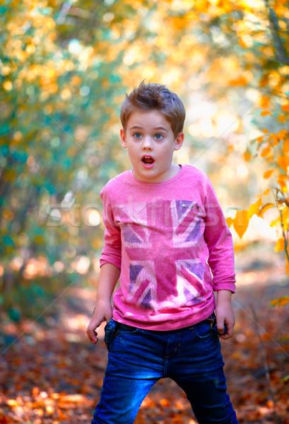 Fiú portré szabadtér 5 éves ősz boldog Stock fotó © igabriela