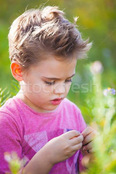 Fiú portré szabadtér 5 éves ősz gyerek Stock fotó © igabriela