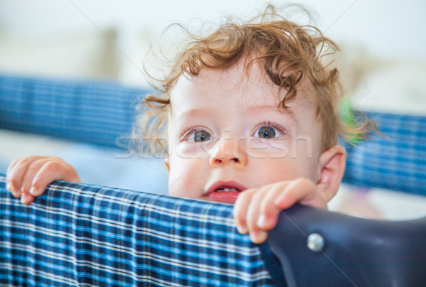 9 months old baby boy Stock photo © igabriela