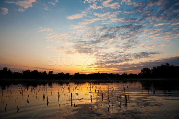 Duna delta gyönyörű napfelkelte tájkép tartalék Stock fotó © igabriela