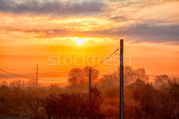 Zonsopgang dorp Roemenië landschap hemel bomen Stockfoto © igabriela