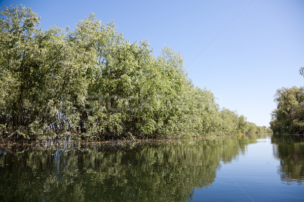 Duna delta gyönyörű tájkép tartalék Romania Stock fotó © igabriela