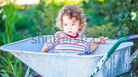 Baby boy exploring outdoor Stock photo © igabriela