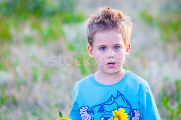 5 éves fiú szabadtér portré vidék gyermek Stock fotó © igabriela