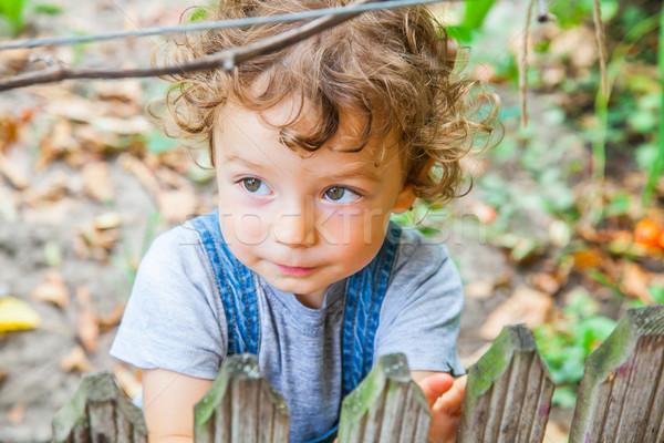 1 год ребенка мальчика портрет за небольшой Сток-фото © igabriela