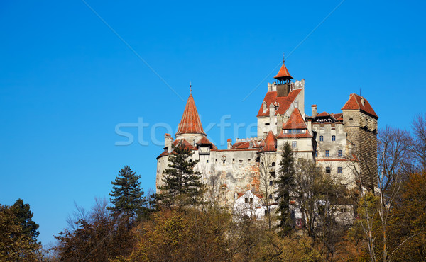 Bran Castle Stock photo © igabriela