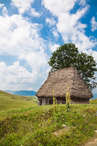 Traditional rustic house in Apuseni Mountains Stock photo © igabriela