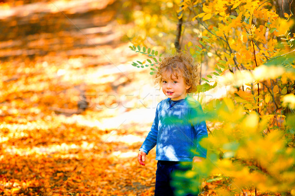 Baby boy in the woods Stock photo © igabriela