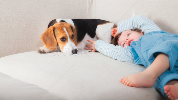 Baby boy and his dog Stock photo © igabriela