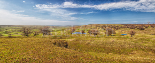 Roemeense platteland landschap dorp natuur bomen Stockfoto © igabriela