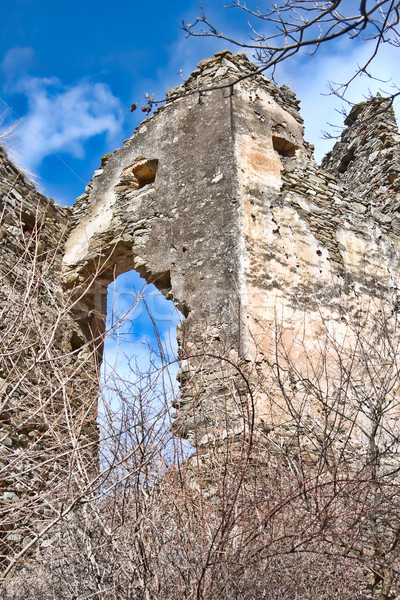 Colt Fortress Stock photo © igabriela