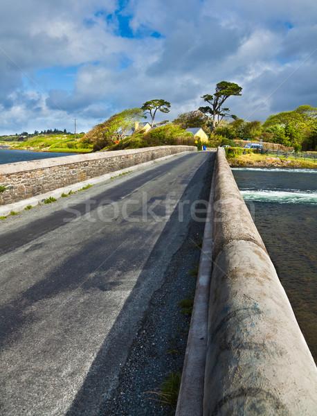 Brücke Hochwasser Straße Landschaft Straße Farbe Stock foto © igabriela