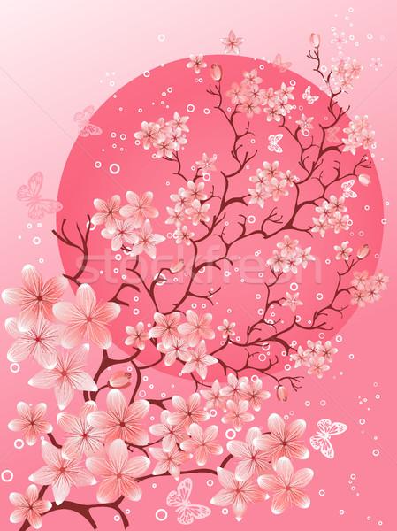 Belo primavera flor de cereja natureza cena abstrato Foto stock © igor_shmel