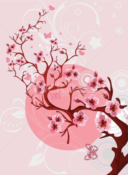 Stock fotó: Cseresznyevirág · gyönyörű · tavasz · természet · jelenet · japán