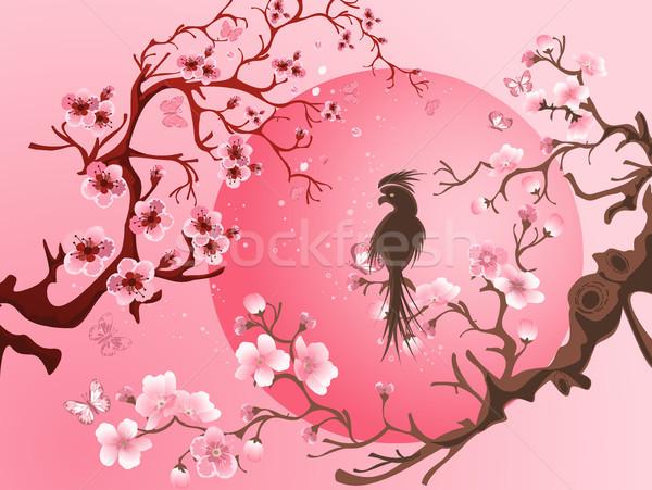Cherry Blossom дерево птица Японский стиль природы Сток-фото © igor_shmel