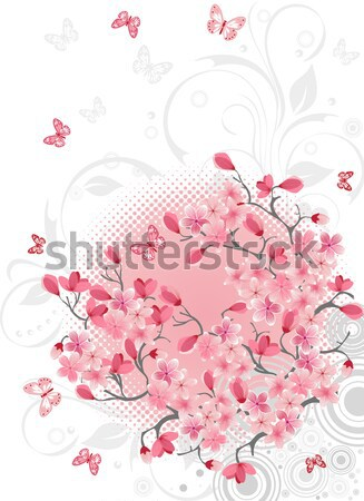 Sakura fiore di ciliegio vettore design primavera abstract Foto d'archivio © igor_shmel