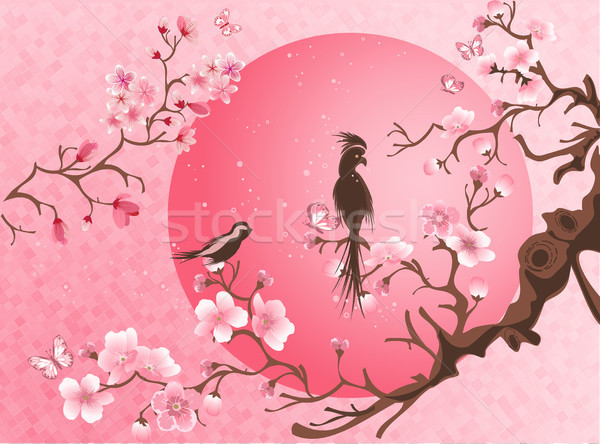 Cherry blossom tree with two bird. Stock photo © igor_shmel