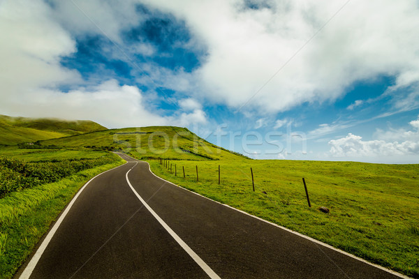 Beautiful road Stock photo © iko