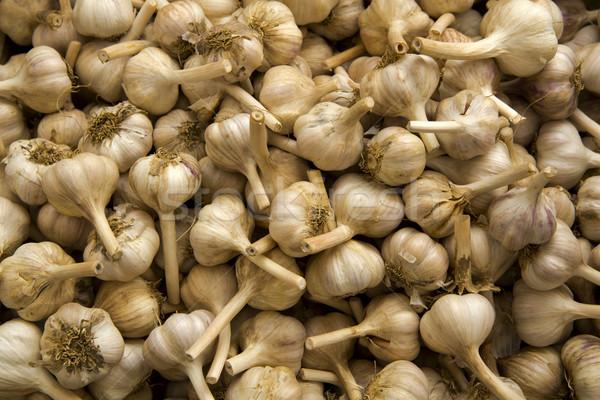 Stock photo: Organic Garlics