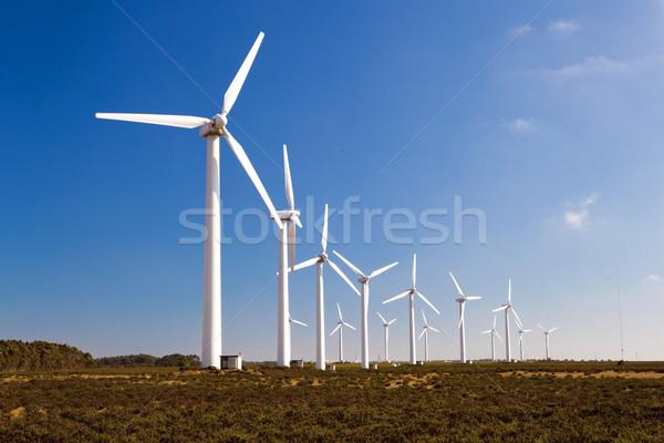 Windturbines Stock photo © iko