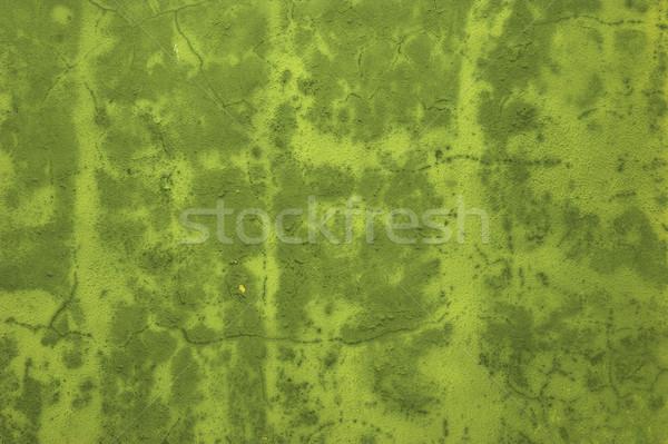 Green background Stock photo © iko