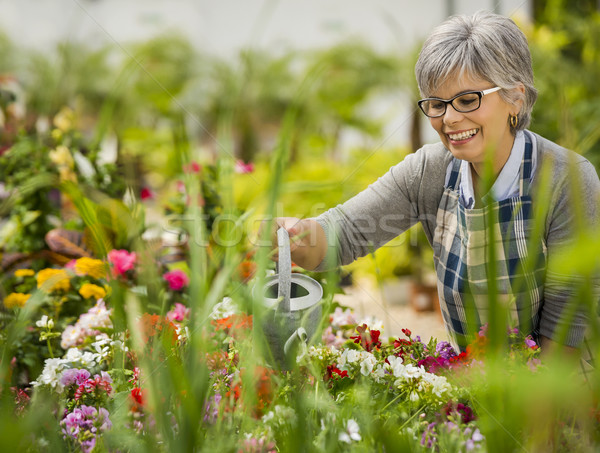 Mature woman watering flowers Stock photo © iko