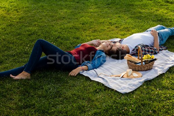 пикника день счастливым парка расслабляющая Сток-фото © iko