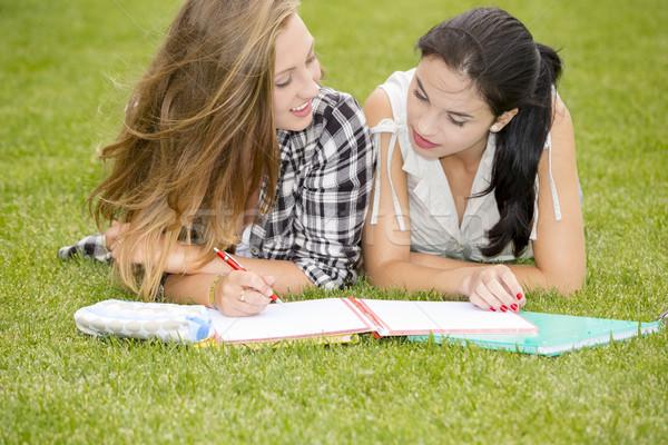 Открытый исследование студентов трава вместе счастливым Сток-фото © iko