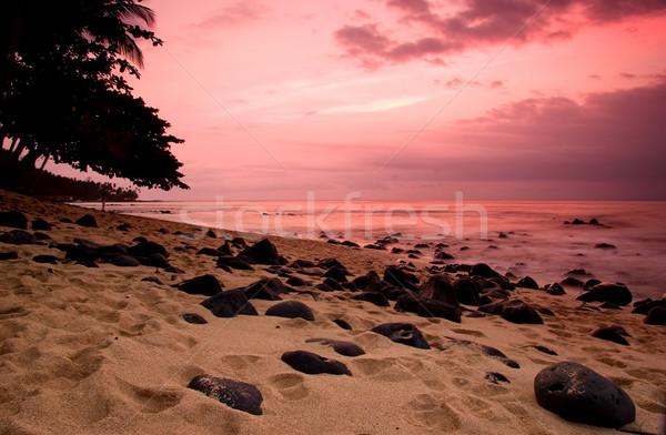 Ekvator plaj güzel gün batımı şaşırtıcı su Stok fotoğraf © iko
