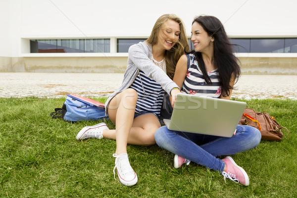 Stock fotó: Diákok · tanul · ül · fű · tanulás · együtt