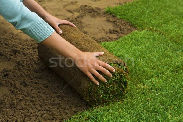 Jardin femme gazon Photo stock © iko