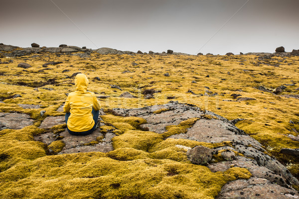 Surrounded by Icelandic moss Stock photo © iko