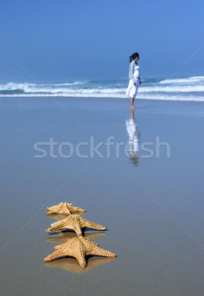 Tree Starfishes Stock photo © iko