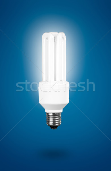 Fluorescent Light Bulb Stock photo © iko