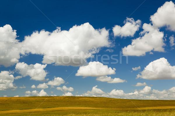 Beautiful landscape Stock photo © iko