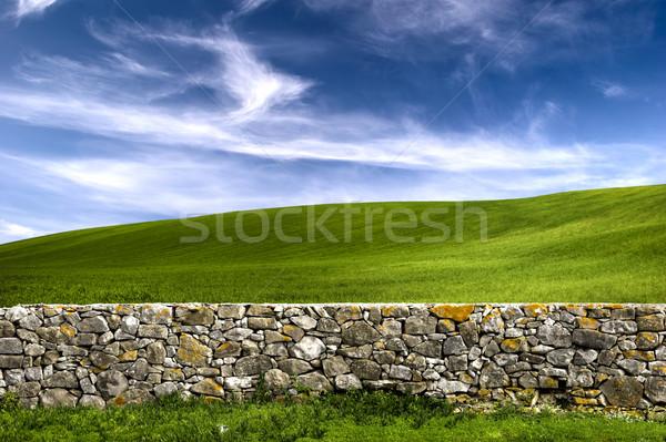 Taş duvar güzel yeşil çayır eski gökyüzü Stok fotoğraf © iko