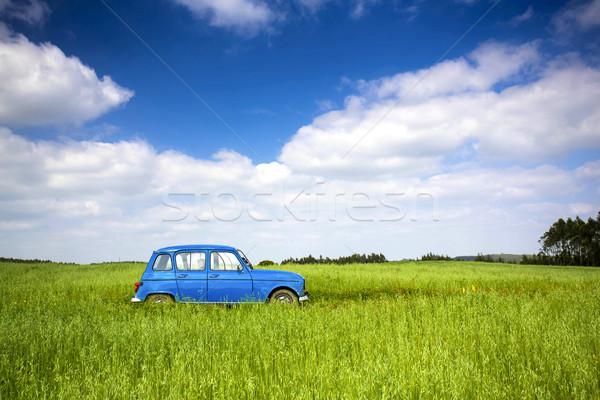 Oude oldtimer mooie groene weide hemel Stockfoto © iko