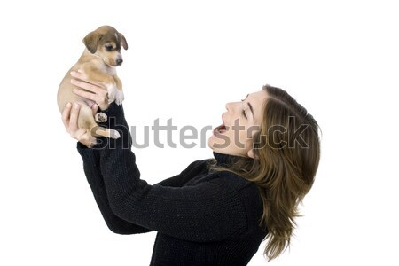 Woman with a puppy Stock photo © iko