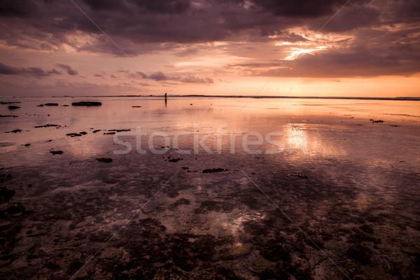 Tropical sunset Stock photo © iko