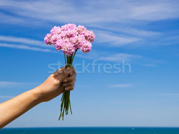 Полевые цветы женщины стороны Blue Sky цветы Сток-фото © iko