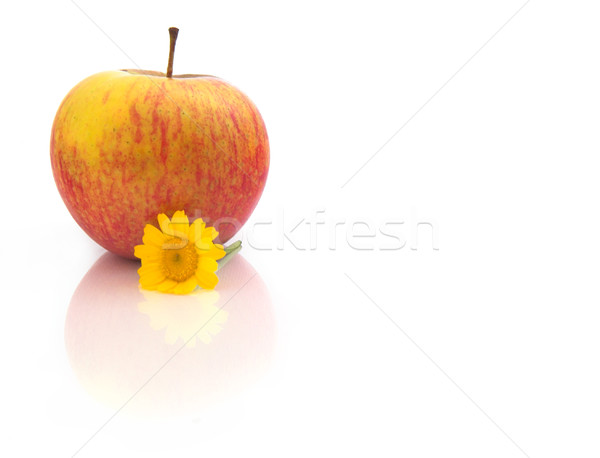 Red Apple with flowers and reflection Stock photo © iko