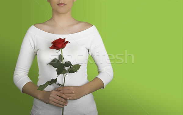 Woman with a red rose Stock photo © iko