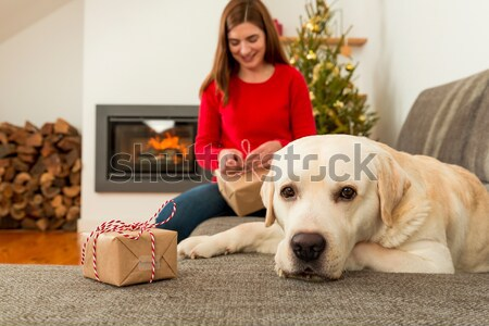 Wrapping presents for Christmas Stock photo © iko